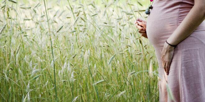Травы, противопоказанные при беременности
